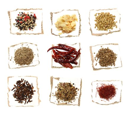 pickling: Different Spices on pieces of paper - Four color Mixed pepper, Dried garlic flakes, White coriander, Deel seeds, Red Hot chilli pepper, Black coriander, Gloves, Pickling mix, Saffron Stock Photo