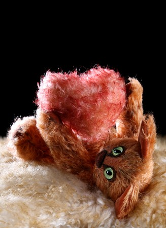 unique red Cat holding fluffy heart in his paws on fur and black backgrounds. Authors work with property release. photo