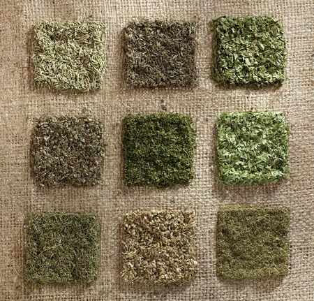 dill leaves: nine dried herb piles on jute hessian backdrop - rosemary, thyme, coriander leaves, basil, parsley, tarragon, dill, oregano, mint
