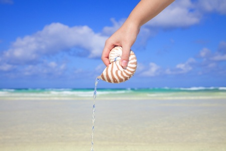 nautilus pompilius: girls hand pouring water from nautilus shell against sea and sky, shallow dof Stock Photo
