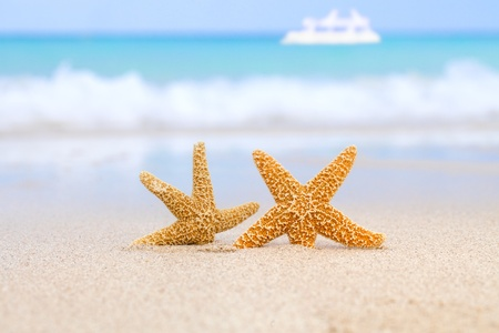summer holiday: two starfish on beach, blue sea and white boat, shallow dof