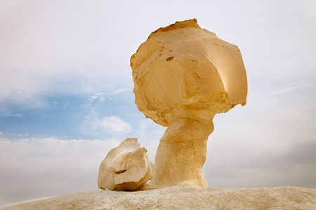 mountain oasis: The limestone formation rocks looks like chicken and mushroom   in the White Desert, Egypt