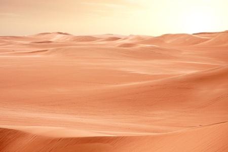 Desert Sahara dunes on sunset, Egypt photo