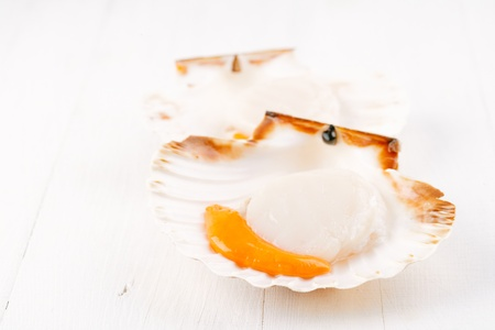 two open raw scallops, on white wooden backdrop, seafood