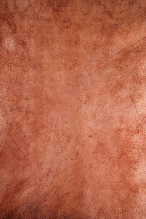 reverse: rawhide leather reverse side background stock photo image