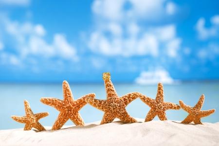 sea star: starfish  with ocean , beach and seascape, shallow dof Stock Photo