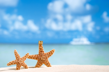 summer vacation: starfish and coconut with ocean , beach and seascape, shallow dof Stock Photo