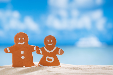 clay  gingerbread boy and girl on beach with seascape  photo