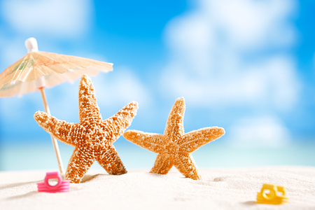 starfish  with ocean , beach and seascape, shallow dof Stock Photo - 22907170