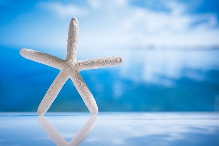 starfish and reflection with ocean, wave and seascape, shallow dof photo