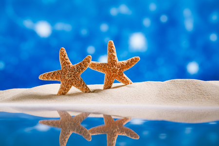 starfish  with stars glitter back and reflection, shallow dof Stock Photo - 22907209