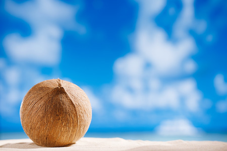 coconut with ocean , beach and seascape, shallow dof photo