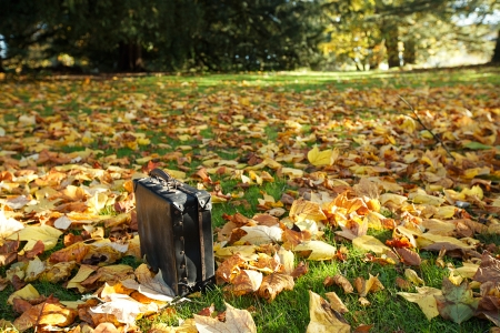 antique suitcase: old black suitcase in the fall forest … shallow dof