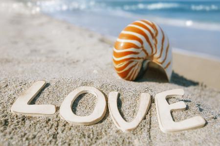 nautilus shell with love message on Florida beach  under the sun light shallow dof photo