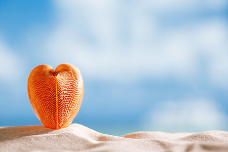 red heart sea shell with ocean , beach and seascape, shallow dof photo