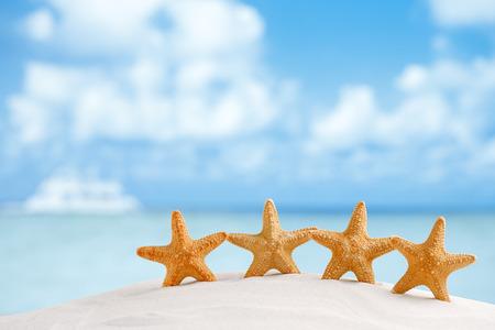 Red Seestern mit Meer, Strand, Himmel und Seenlandschaft, flache DOF Standard-Bild - 30205017