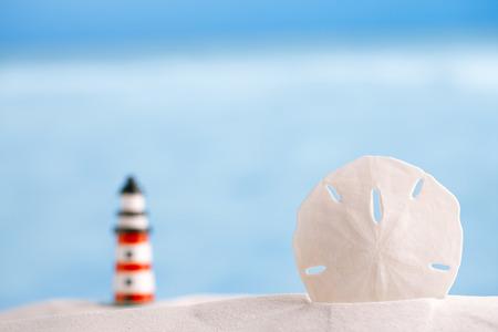 sand dollar: shell arena d�lar en la playa y el mar y el barco de fondo, dof bajo