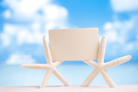 animal photo: white starfish with blank retro photo on white sand beach, sky and seascape, shallow dof Stock Photo