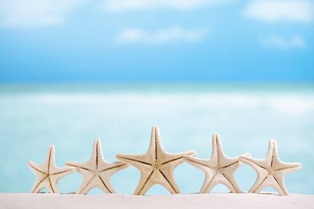 5 stars fish , white starfish with ocean, boat, white sand beach, sky and seascape, shallow dof Stock Photo