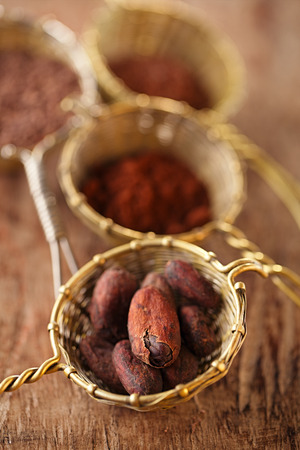 cocoa powder: cocoa beans in old rustic style silver sieves on old wooden background