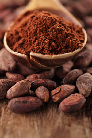 dry powder: cocoa powder in spoon on roasted cocoa chocolate beans background