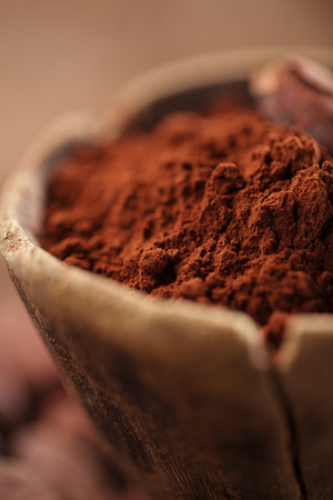 cocoa bean: cocoa powder in spoon on roasted cocoa chocolate beans background,  focus on spoon