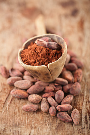 cocoa powder: cocoa powder in spoon on roasted cocoa chocolate beans background