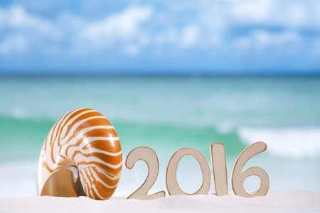 winter escape: 2016 numbers letters with seashell, ocean , beach and seascape, shallow dof