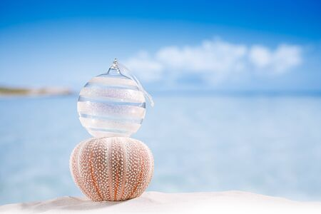 urchin: christmas glass ball on  beach and sea urchin  with seascape background