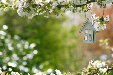 Little wooden house in Spring with blossom cherry flower sakura Archivio Fotografico