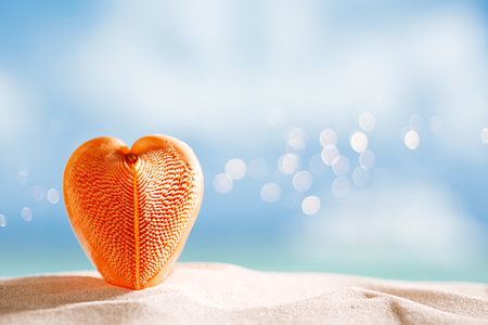 red heart sea shell with ocean , beach and seascape, shallow dof Stock Photo