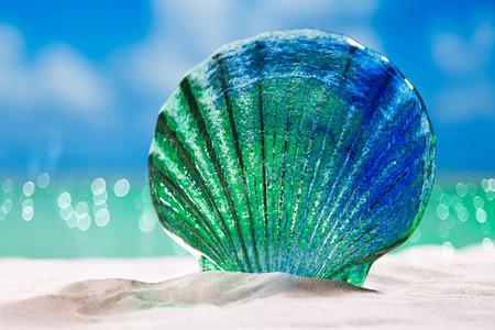 glass tropical sea  shell on white  beach sand under the sun light, shallow dof Stock Photo