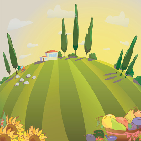 menu land: Village landscape with sunflowers and fruit. Farm sheep and harvest. Illustration sunset over meadows. Vector  Illustration