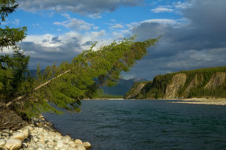 primordial: Primordial nature of Yakutia. Cherskiy mountain ridge. Chibagalakh river.