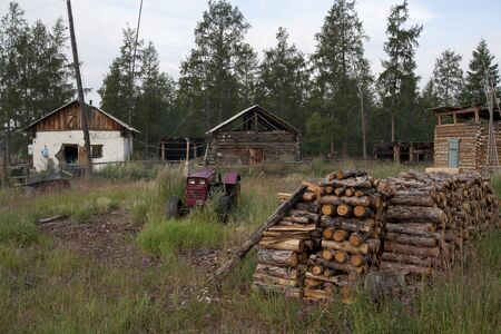 homestead: Yakutia homestead in the forest.