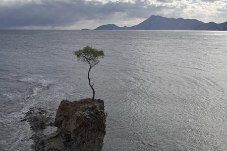 singleness: Turkey. The  Mediterranean Sea.
