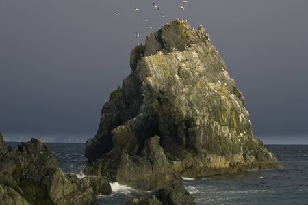 impregnable: Russia, Magadan region, Coney peninsula, The Sea of Okhotsk, Cape Taran