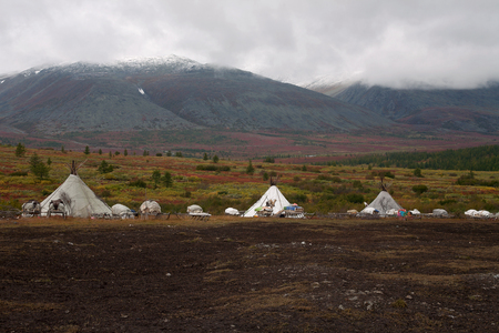 alpine tundra: Herders camp in the mountains of the Polar Urals. Russia.
