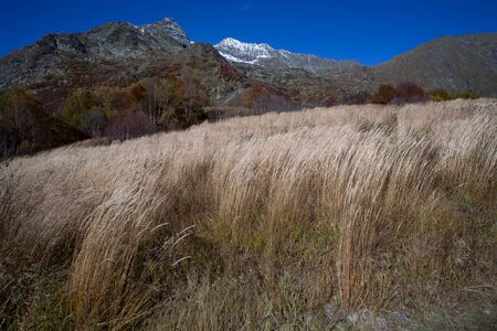 wilting: Autumn in the mountains of the North Caucasus. Sochi Region. Russia. Stock Photo