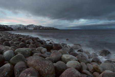 surly: Rounded stones on the seashore. Barents Sea. Murmansk region. Russia. Stock Photo