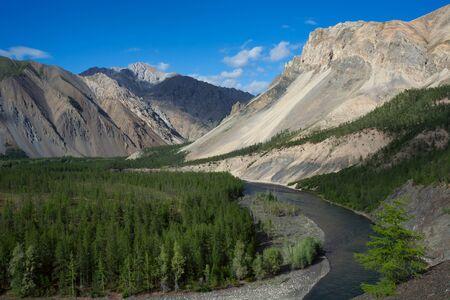 taiga: Beautiful mountain river and taiga. Omulyovka River. Magadan Region. Russia.