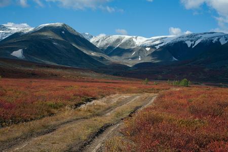 alpine tundra: Dirt road in the autumn mountains. Polar Urals. Russia.