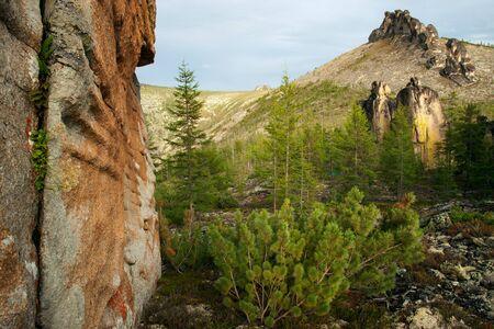 vertex: Granite pillars in the mountains. Oimyakon area. Yakutia. Russia. Stock Photo