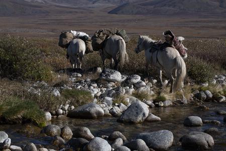 enters: Horse caravan with a cargo enters the river. Ridge Cherskiy. Yakutia. Russia. Stock Photo