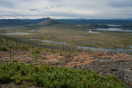 numerous: Numerous lakes in the valley. Oimyakon Highlands. Yakutia. Russia.