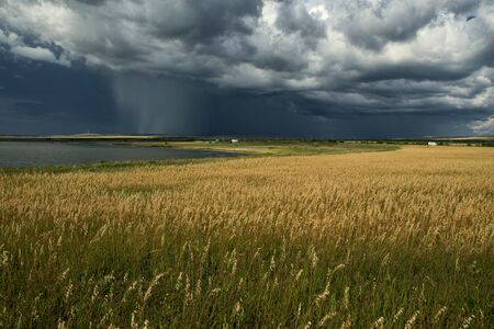 formidable: Rain from the clouds over a lake. Khakassia. Russia.