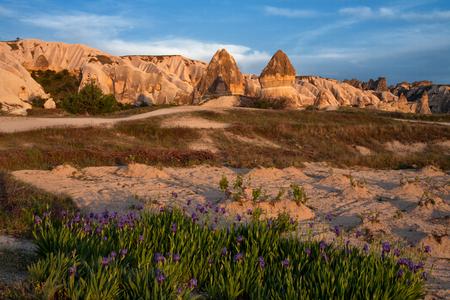 colonnade: The unique landscape of volcanic tuffs. Anatolian Plateau. Cappadocia. Turkey. Stock Photo
