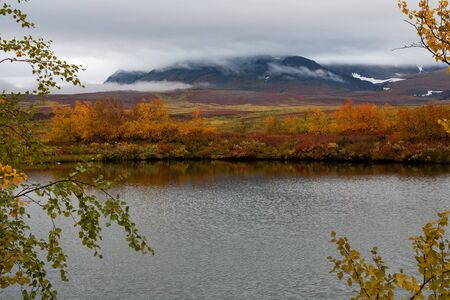 autumn colouring: Lake in autumn coloring and mountains in the clouds. Polar Urals. Russia.