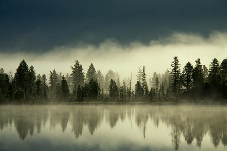 Fog over the forest by the shore of the lake. Yakutia, lake Darpir.