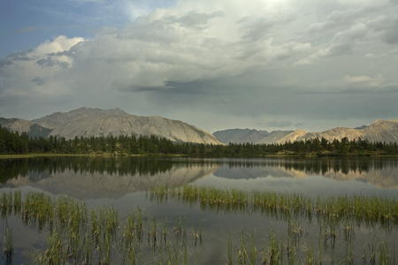Calm mountain lake and grass near the shore. Yakutia, Omulewska the Midlands. Banco de Imagens